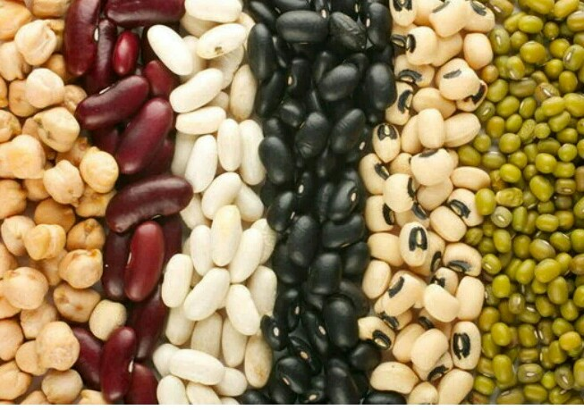 beans-protein